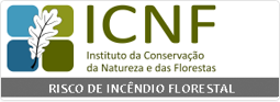 Sítio da Internet do Instituto da Conservação da Natureza e das Florestas
